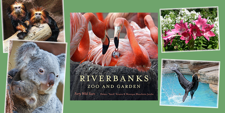 Discount coupons for riverbank zoo