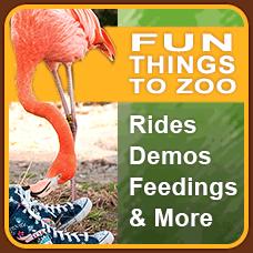 Riverbanks Zoo U0026 Garden